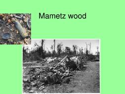 Mametz wood.ppt