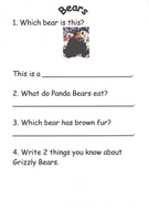 Bear Comprehension