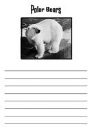 Bear writing