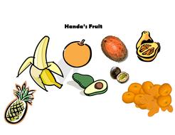 Handa_fruit[1].doc