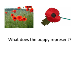 lesson_9_Flanders_Fields[1].ppt