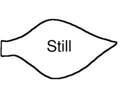 still.doc