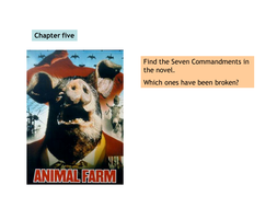 chapter five.ppt