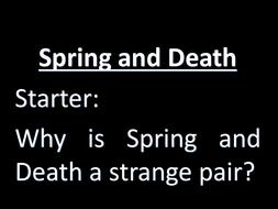 Skellig Lesson Chapter 38