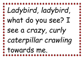 Ladybird poem.doc