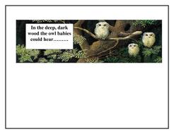 owl_babies_can_hear....[1].doc