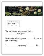 Owl_Babies_Cloze[1].doc