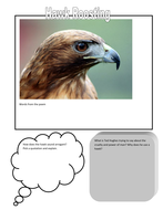 Lesson 7 - Hawk Roosting.docx