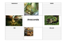 Anaconda_notes_LA_best_printed_on_A3[1].doc