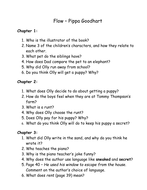 Guided Reading questions  - Flow