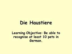 Haustiere (Describing Animals with German)