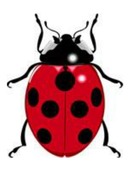 Ladybug spots - number pairs that add up to 10
