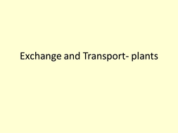 Exchange_and_Transport_plants.ppt