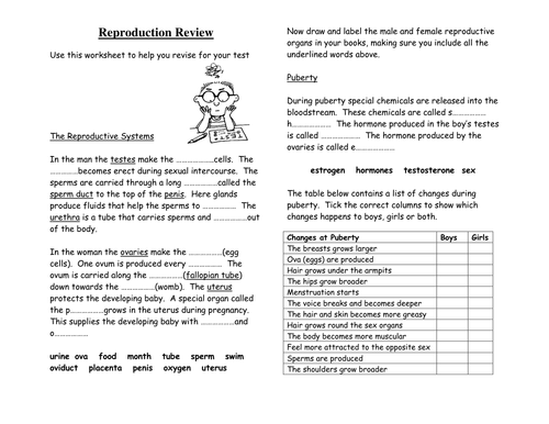 Human Body Reproduction Revision Worksheet by diddymand – Human Reproduction Worksheet