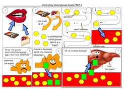 Controlling blood glucose learning mat.doc