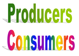 consumers producers.doc