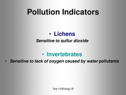 B1b_Lichens[1].ppt