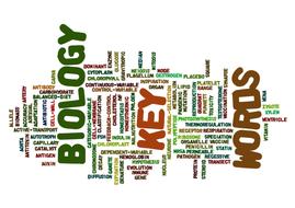 Biology Word Cloud Poster by bio_teach | Teaching Resources
