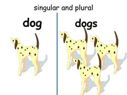 Plural nouns , standard L. K1.c