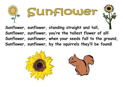 Themed Poems - seeds and plants by kCOATES - Teaching ...
