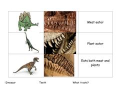 diet_teeth_dinosaur[1].doc