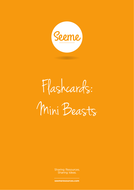 Mini Beasts Flashcards