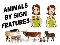 Animals Part 1.pptx