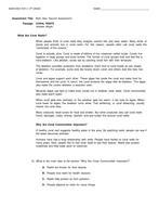 MAIN IDEA TEST 2.docx