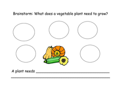What does a plant need? Web Activity K-2