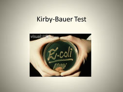 Bauer Test Protocol and Lab
