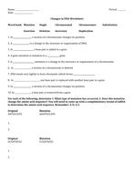 Changes in DNA Worksheet.docx