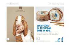 Metaphor in Print Ads