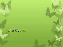LIFE-CYCLES.pptx