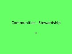 Stewardship in religion year 7