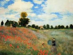 poppy-field.png