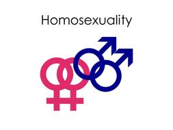 Sexual Ethics - Homosexuality