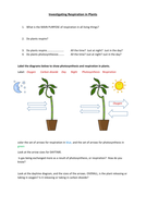 Respiration in plants - experiment using hydrogen carbonate indicator