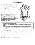Magnets worksheets yr8