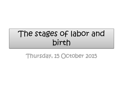 The 3 stages of labor