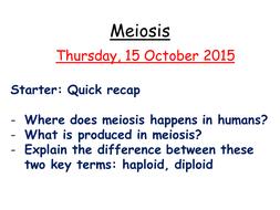 Meiosis.pptx