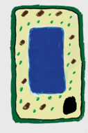 Plant cell diagram for new KS3 curriculum | Teaching Resources