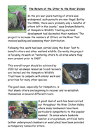 River Itchen. Otters and Rivers Project.docx