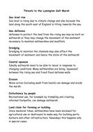 Lymington Saltmarsh threats to the environment.docx