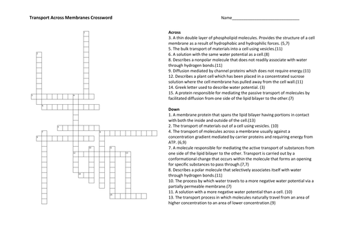 All Worksheets » Cell Membrane And Transport Worksheet Answers ...