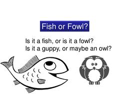 Fish or Fowl