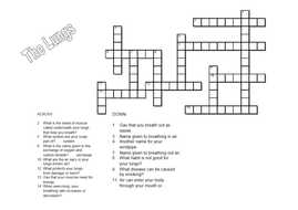 The lungs and respiratory system crossword by carlfarrant88 the lungs and respiratory system crossword ccuart Image collections