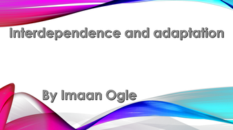 Presentation Interdependence and Adaptation