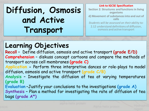 Diffusion Osmosis And Active Transport By Freddyhillman Teaching