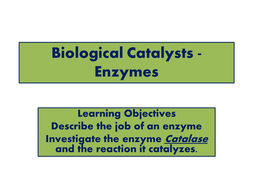 Biological Catalysts - Enzymes - TEACHER.pptx