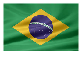 Brazil Map and Flag.docx